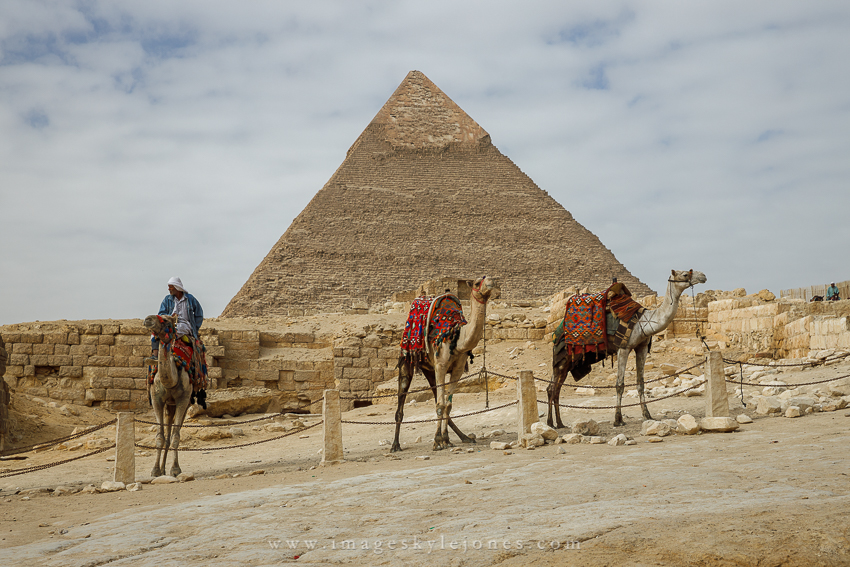 1141 Pyramid and Camels_850.jpg