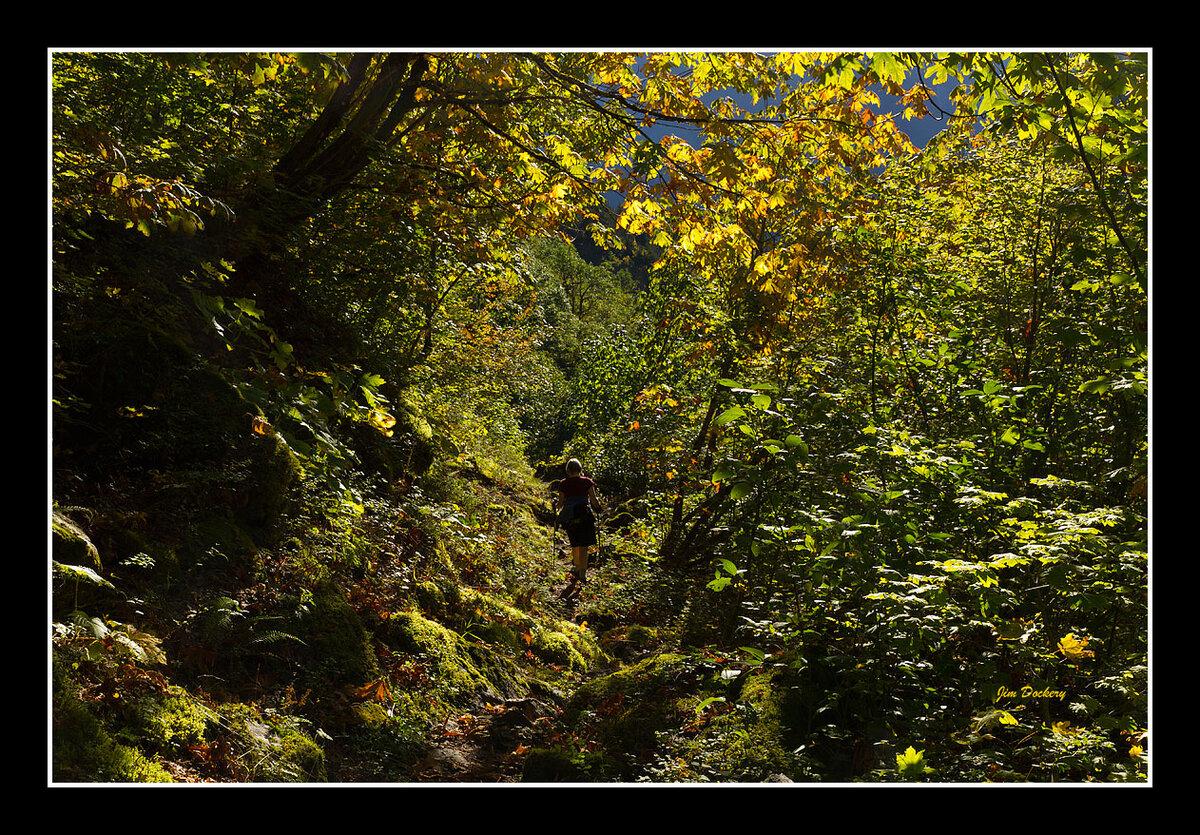 Down-Perry-Creek-Trail-11.jpg