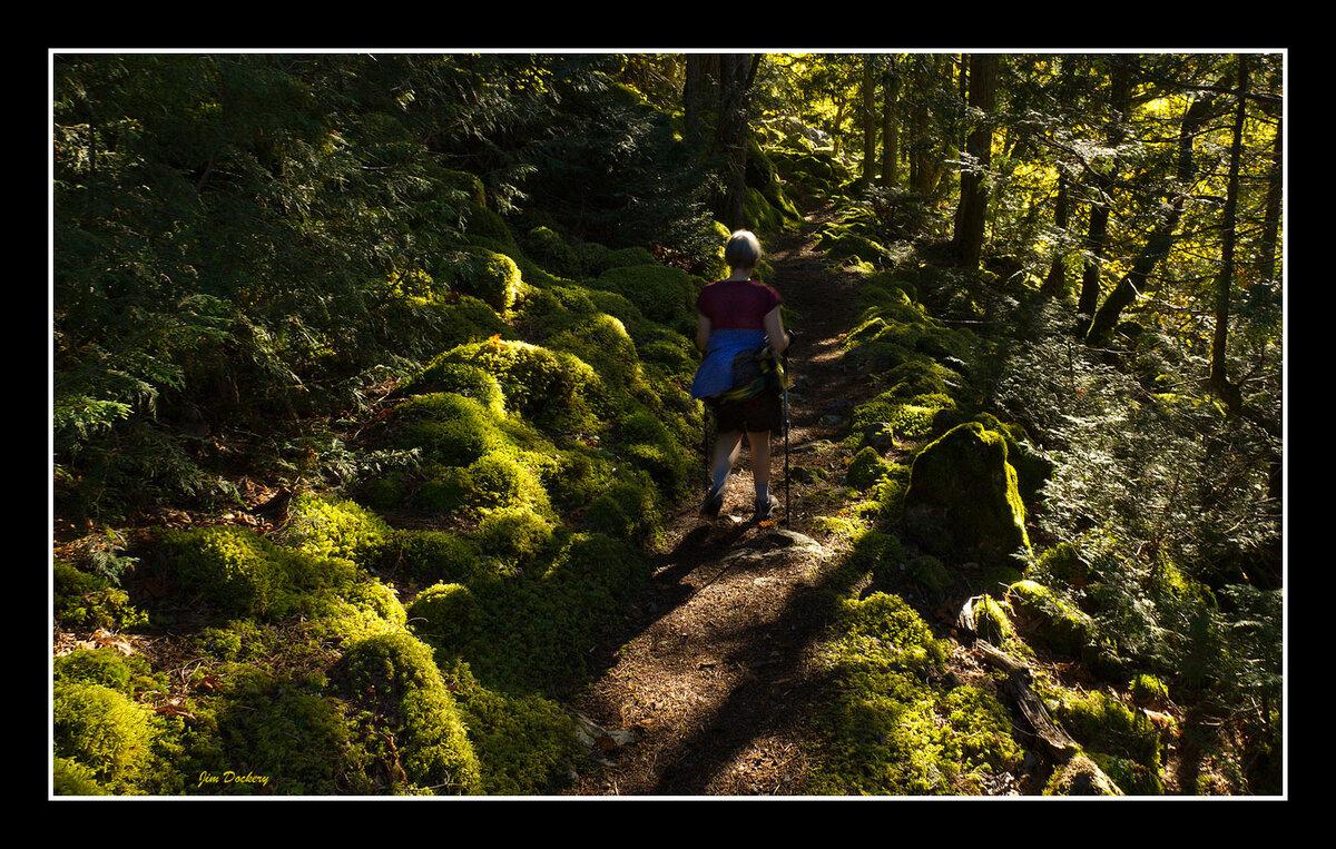 Down-Perry-Creek-Trail-20.jpg