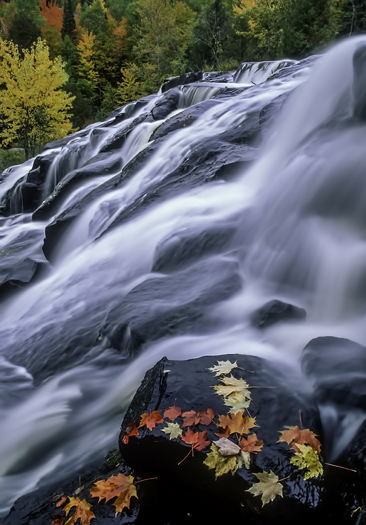 Fall at Bond Falls.jpg
