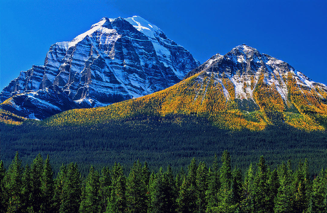 Larch covred montain.jpg