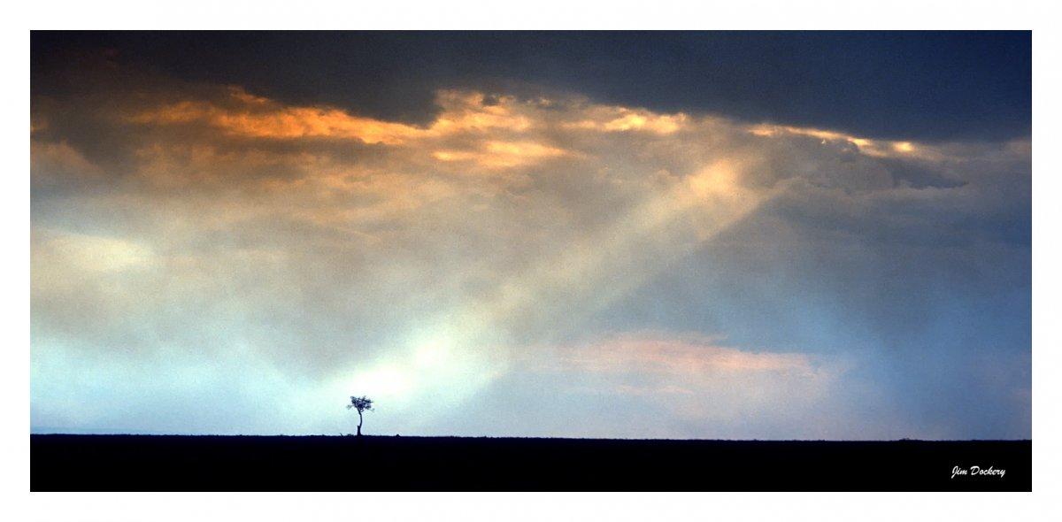 Masai-Mara-(40)-2.jpg