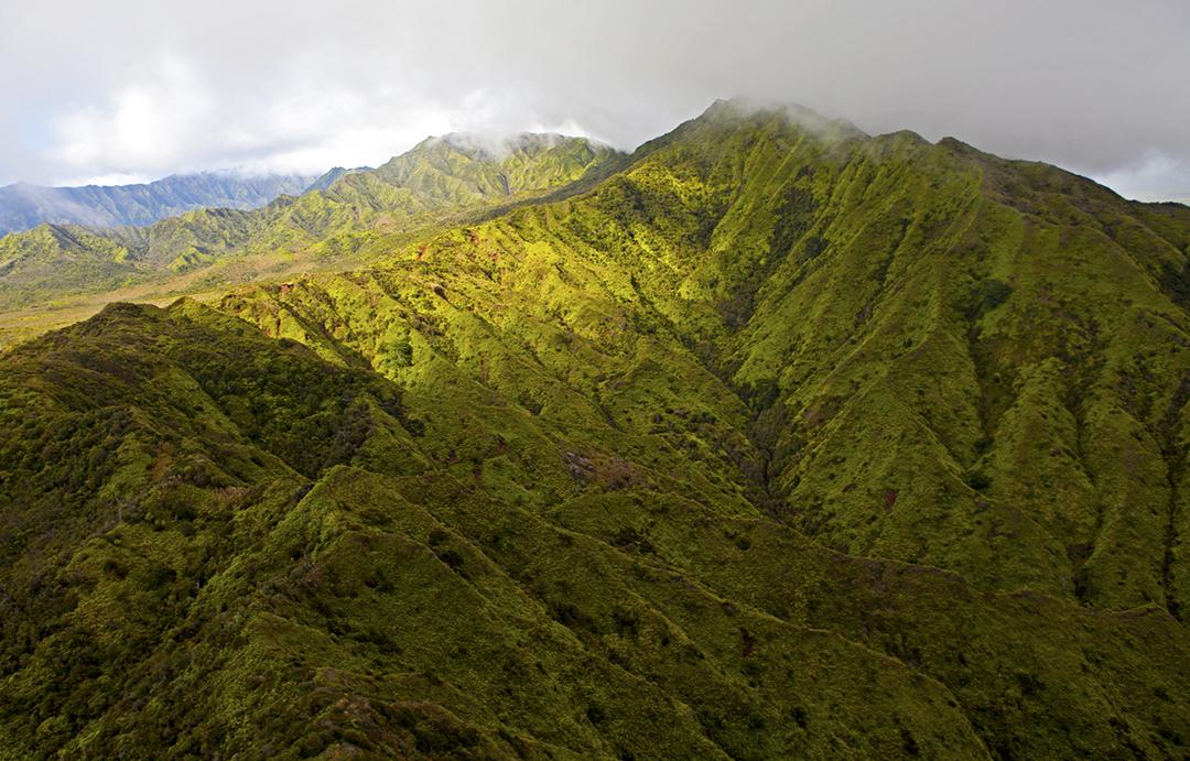 Mount Waialeale.jpg