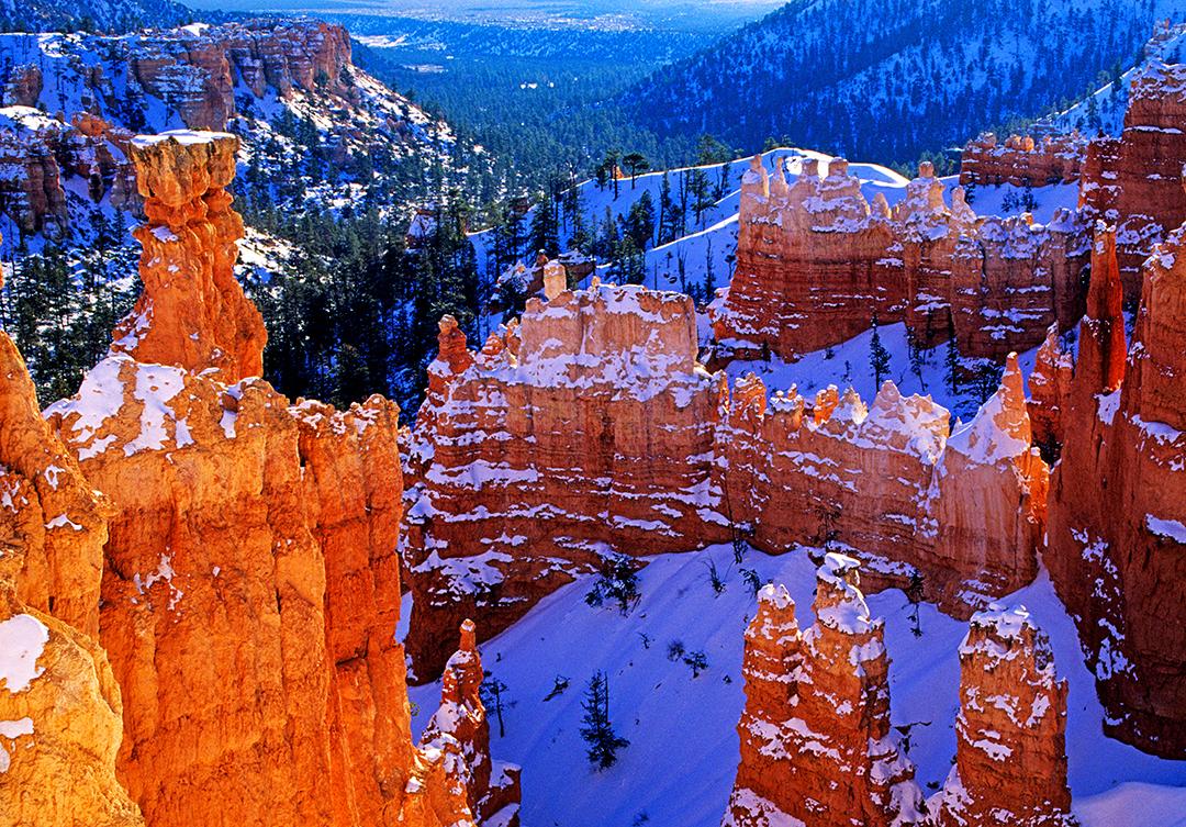 Navajo trail final.jpg