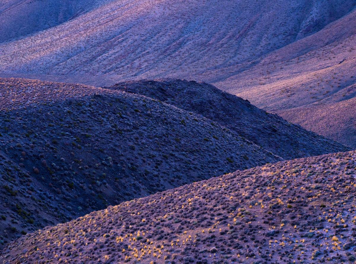 Purple Hills v2 FW.jpg