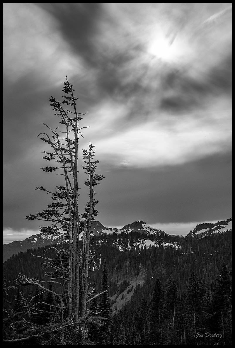 Rainier-6.20--014.jpg