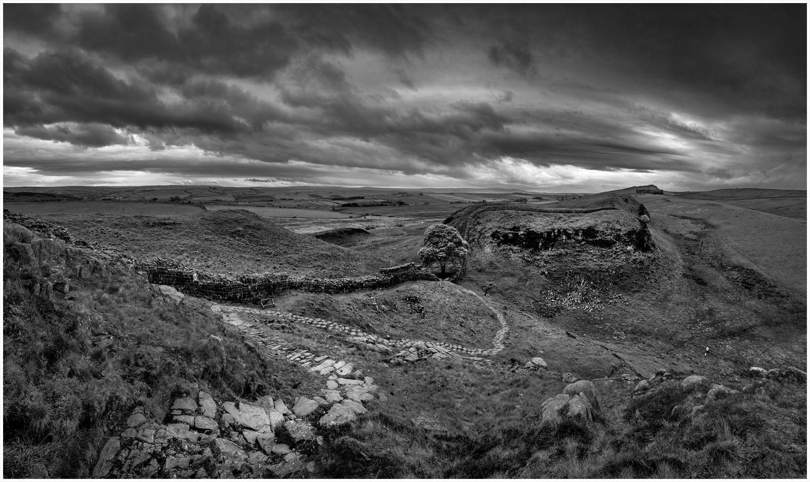 Untitled_Panorama-2.jpg