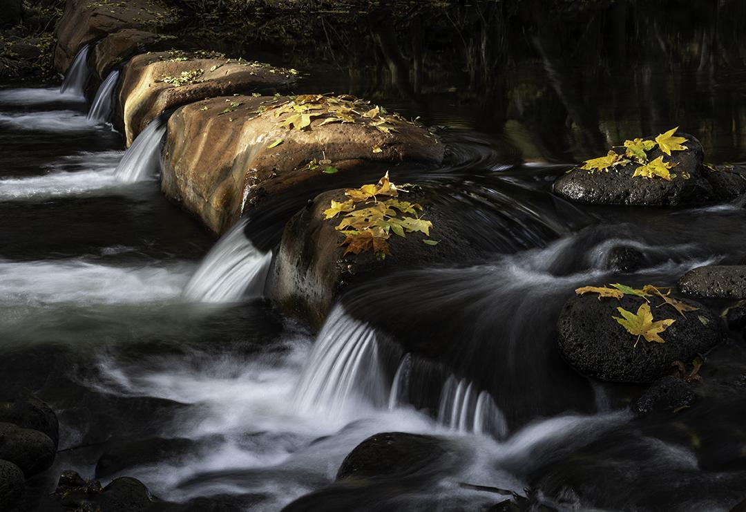 Wet Beaver Creek.jpg