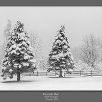 Fenceline Snow BW Cr2.jpg