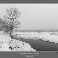 Blackwater Riverbank Winter.jpg