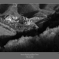 Seneca Rocks Bare Trees.jpg