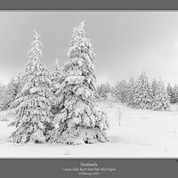Sentinels Bald Knob Winter.jpg